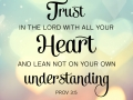 Trust in the Lord with your whole heart and lean not on your own understanding.