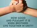 How good and pleasant it is when brothers live together in unity!